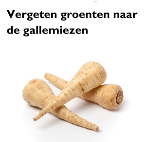 Blogs_Gallemiezen